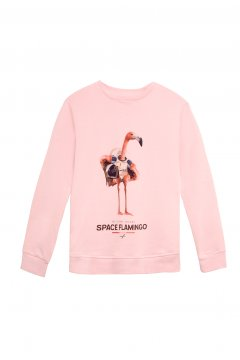 Sudadera SPACE FLAMINGO SF_E001